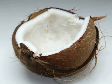 how to open a coconut - half of a fresh coconut on a countertop