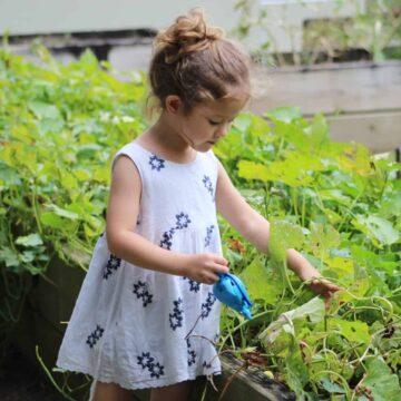 benefits of gardening for kids - little girl in sundress watering a veggie garden