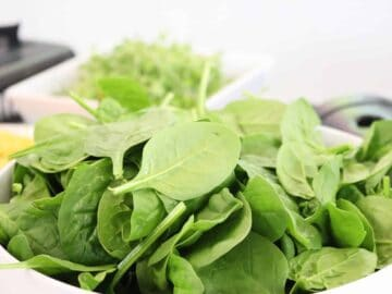 Oxalates - Bowl of Baby Spinach